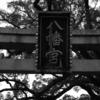 百舌鳥八幡宮の初詣