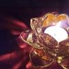 【はじまりの新月・お誘いです】5/15(土)夜9時、夜の瞑想会(ナイト・ディヤーナ) ZOOM 巡礼 祈り 風(ルン) 願い事 満天の星々 サイレント 天宮光啓先生 癒し