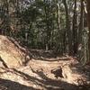 高尾山リポート、今度はちゃんと登りましたよ。(その後の筋肉痛も大丈夫)