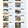 カレンダー写真