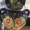スペインの植木鉢活用