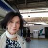 横浜日帰りでおでかけ❶〜やっぱり「のぞみ」は早いのです🚄 昼下がりの霊園で、ひとり物を思いに耽け、散り際のバラに何かを重ねた山下公園🌹