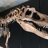 恐竜の分類