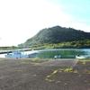 小さな漁港の朝  ビットにイソヒヨドリ