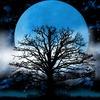 9/6 魚座 満月へのメッセージ「新しい風が吹く」