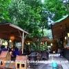 <ベトナム:ハノイ>Cafe Villa ~フランス統治時代に建てられた建築を利用したカフェ こんなところに日本語ペラペラのハンガリー人!~