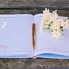 お気に入りの手帳【ロルバーン(Rollbahn)】~表紙の絵柄に心奪われ続けています~
