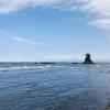 【観光】地元民による雨晴海岸散歩【絶景】
