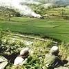 「KOREA -Forgotten War-」OCS(MMP)を対戦する 【第2戦】洛東江攻防戦(1/2)