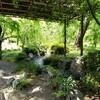 【京都】『城南宮』に行ってきました。 京都観光 京都旅行 女子旅 旅気分 青もみじ