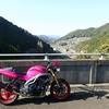 955i 岩屋川内ダム