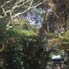 志賀海神社へ。