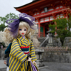 大阪と京都に5泊6日の一人旅のお話し。京町家に宿泊編。