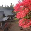 京都 高雄の紅葉