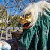 上野動物園でお正月!干支柄せんべい配布や獅子舞、オリジナル絵馬作りなどイベント盛りだくさん!!