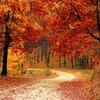 秋といえば・・・「食欲の秋」しか思い浮かばない!