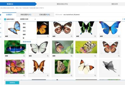 PAI-AutoLearningの紹介〜コードなし、機械学習知識不要の画像分類〜
