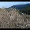 奈良の娘と登り納め.‥三峰山