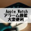 Apple Watchのアラーム機能は家族を起こさずにすむので便利!