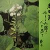 2月17日誕生日の花と花言葉