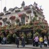ロンドンの街の花