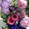 pink Flower 💐
