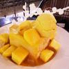 人生で最もインスタ映えするマンゴーかき氷に出合った:台中「第四信用合同社」