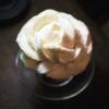 暗闇の中で咲くバニラアイスの白いバラ【岡山・西洋乞食】