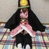 【鬼滅の刃】竈門禰豆子コスプレで大喜び♪~ハロウィンはこれで決まり!~