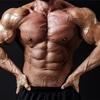 筋肉とスジを別にするのは筋違い?