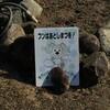 名張おさんぽ(2) 犬看板