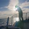 志摩沖近海便ジギング〜ワラサにスマ、底物