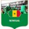 セネガル代表メンバーの背番号と身長と所属クラブ一覧【サッカーロシアワールドカップ】注目選手は?