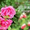 10月✾神無月✾october✾何かと記憶に残る月になりそうです
