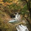 【紅葉トレッキング】秋の西沢渓谷で森林浴