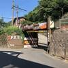 【箱根トレラン】箱根湯元〜明神ヶ岳〜金時山