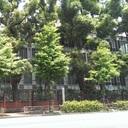 東京大学を卒業しましたが、