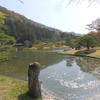 2021年 京都の桜をサイクリングで巡る4日間②