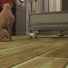 シムズ4 Cats&Dogs編 第13話 家族団欒