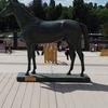 フランスの名馬グラディアトゥール