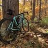 秋晴れの日光国立公園を一周する紅葉ライド