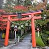 秋薔薇の見頃も今週末まで! 奈良・霊山寺