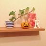 【ちょこっとハロウィン】小さなかぼちゃを飾ってみました。
