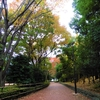 #072 平和の森公園(2017.11.14)