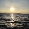 2017初釣り 藍島沖~六連沖 ジギング対インチク