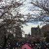錦糸公園 櫻まつり 2017年 (8)