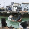 第35回 英国地物の魚を探し求める旅