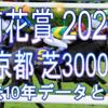 【菊花賞 2020】過去10年データと予想