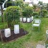 菜園だより'20〈コロナに抗して〉 ④ 苗の植え付け