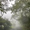 軽井沢11月並みの寒さ「長野県は広い」